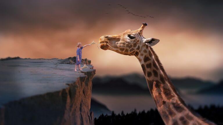 giraffe 1959110 1280 - Leila Navarro - Palestrante Motivacional