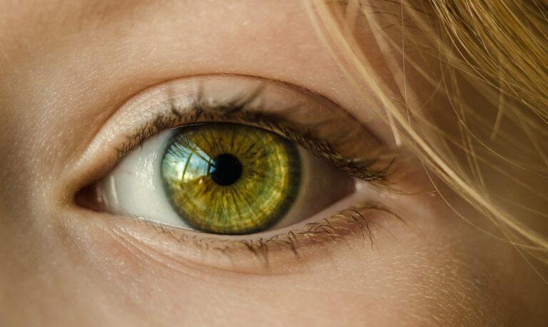 eye 1132531 960 720 - Leila Navarro - Palestrante Motivacional